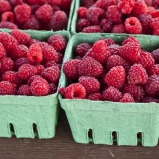 Farm Fresh Raspberries