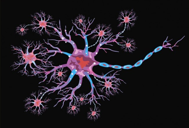 schematic illustration of the neuron on a black background